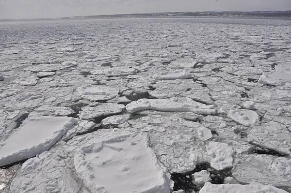 有些浮冰還蠻大塊的