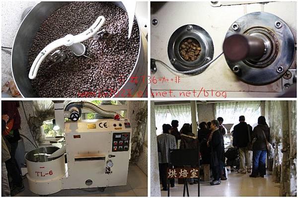 元井136咖啡莊園IMG_0889p