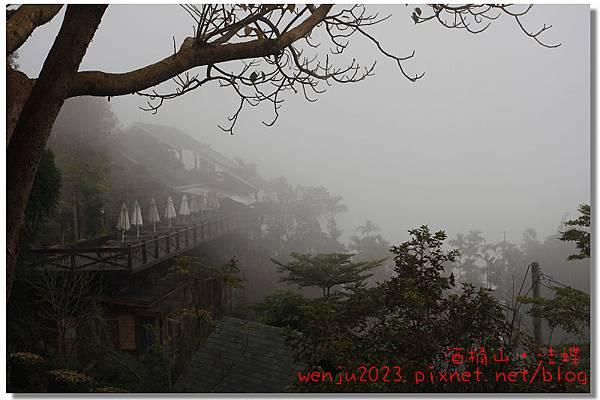 酒桶山,法蝶藝術廚房IMG_0929p