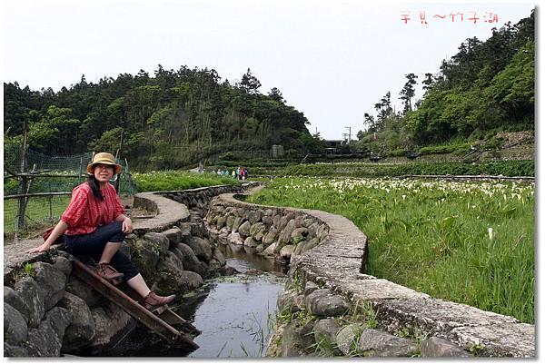 芋見.竹子湖