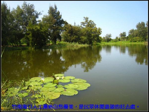 竹南海口人工濕地自然優美,是民眾休閒遊憩的好去處。.jpg