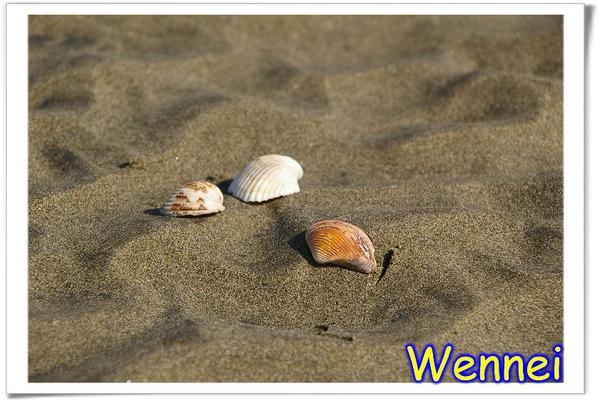 漂亮的沙灘