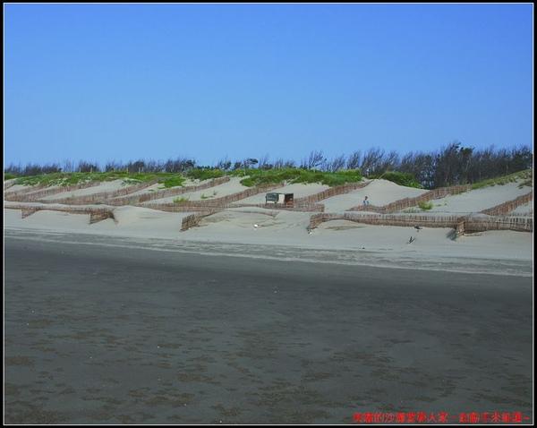 海岸林沙丘.jpg