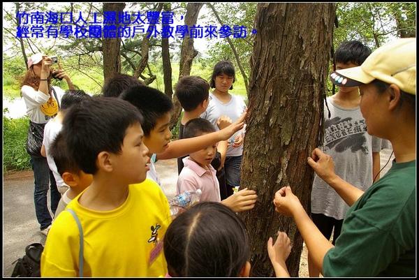 竹南海口人工濕地太豐富,經常有學校團體的戶外教學前來參訪。.jpg