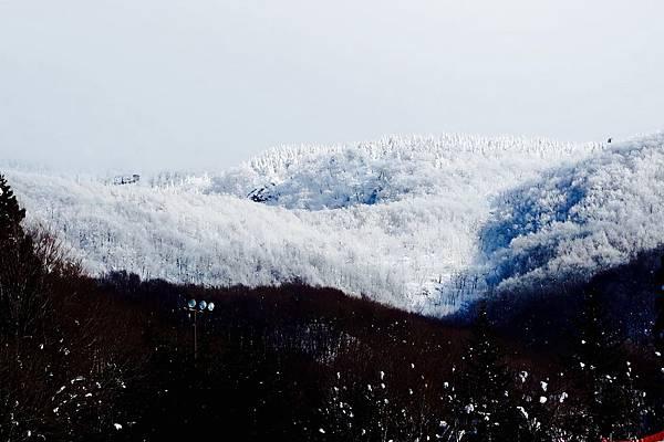 蔵王樹冰2017.01.28