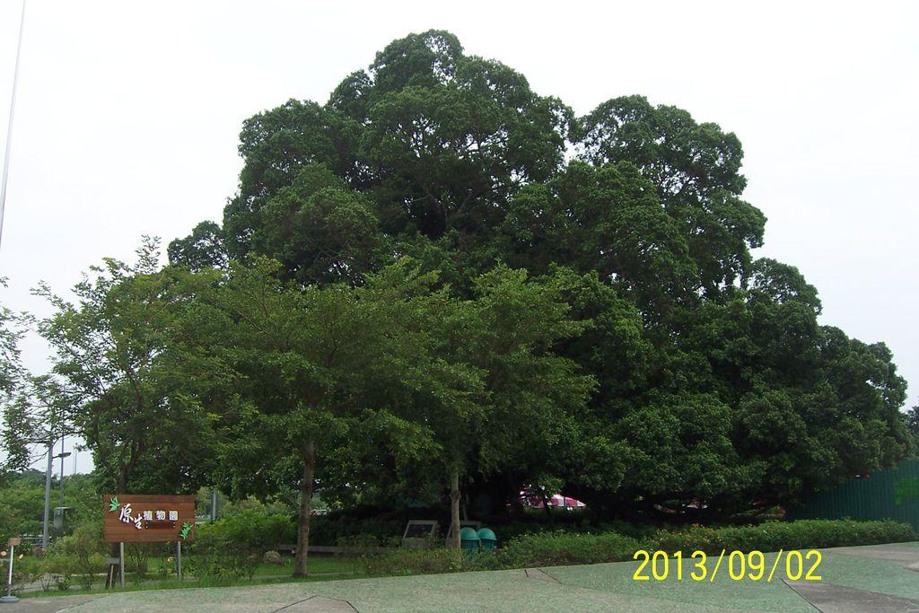 2013.9.2-4 045