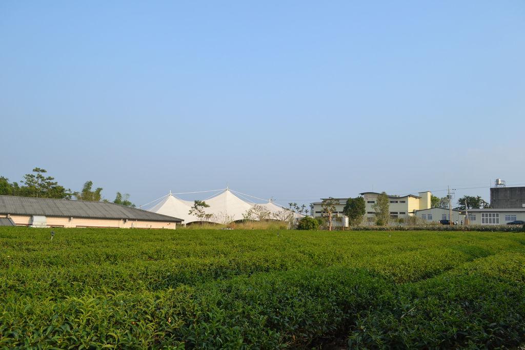 2013.10.27-29台南高雄 533