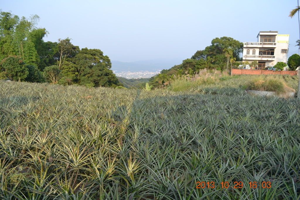 2013.10.27-29台南高雄 537