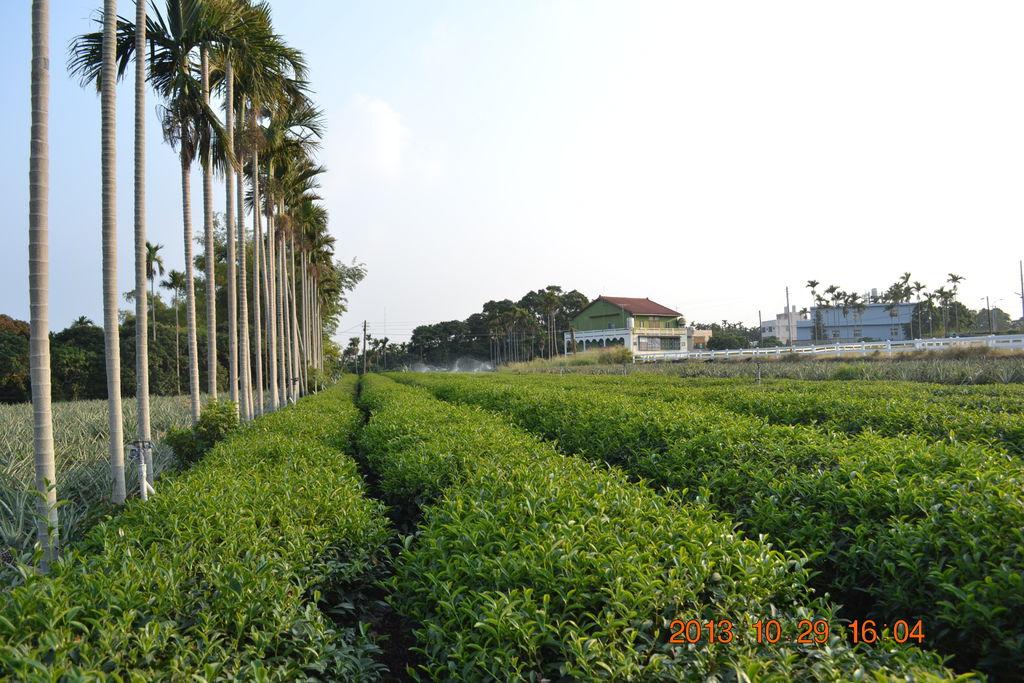 2013.10.27-29台南高雄 538