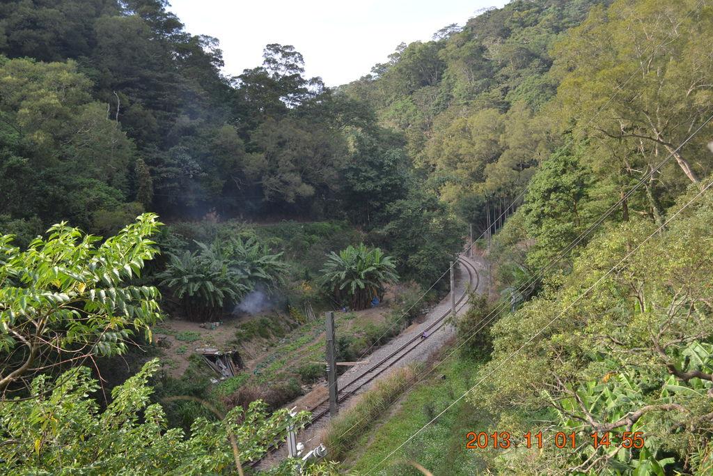 2013.11.1西湖村 219