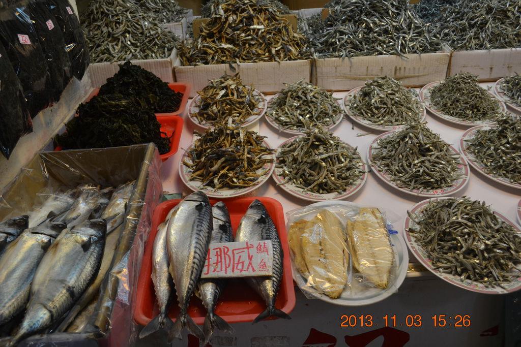 2013.11.3永安漁港 011