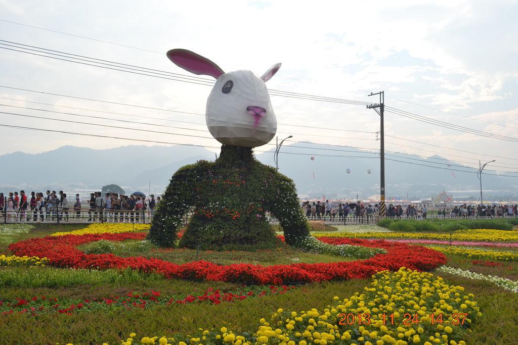 2013.11.25新社花海 111