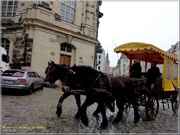 Dresden_1230-12.jpg