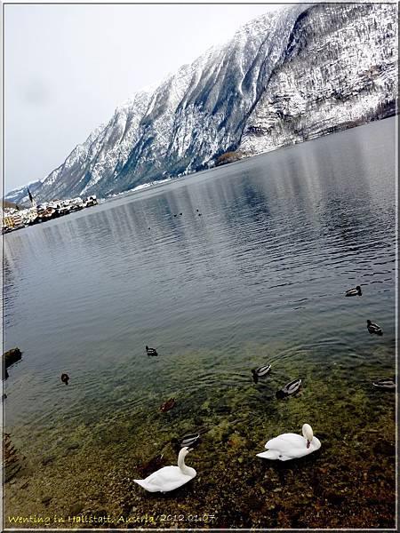 Hallstatt_0107-11.jpg