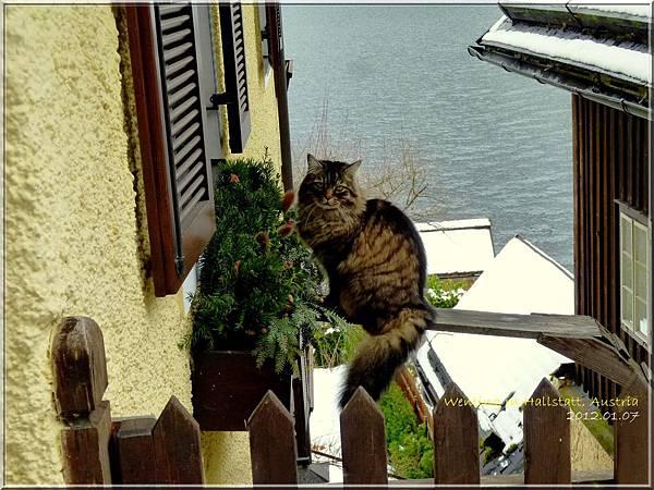 Hallstatt_0107-20.jpg