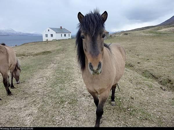 Akureyri_0506-001