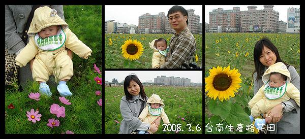 20080306生產路花田.jpg