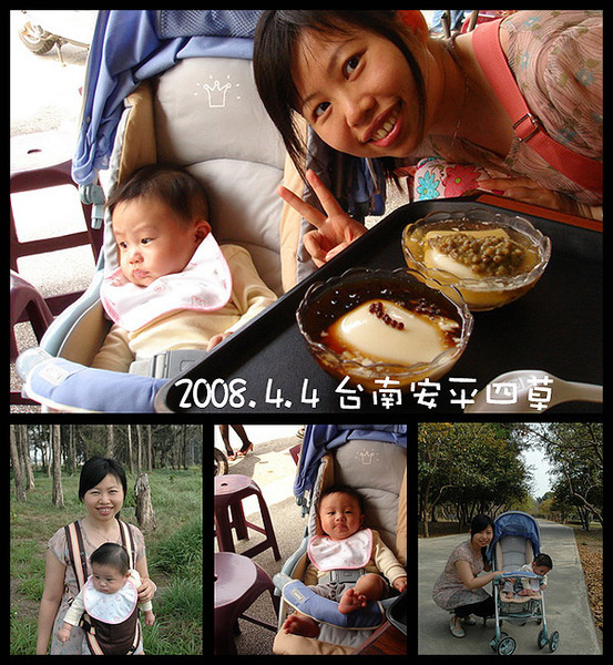 20080404安平四草.jpg