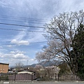 IMG_5820.jpg