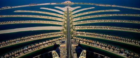 palm island copy