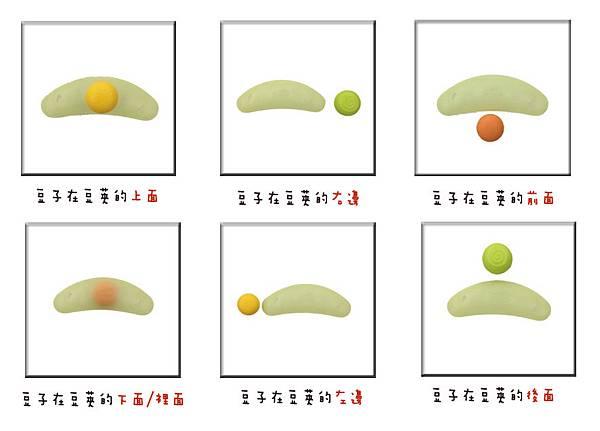 豆莢位置定義.jpg