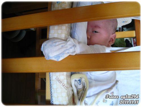 111111-睡到手掉出嬰兒床了.JPG