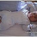 111119-嬰兒床裡的小胖兔
