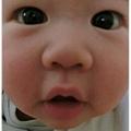 120114-好奇寶寶