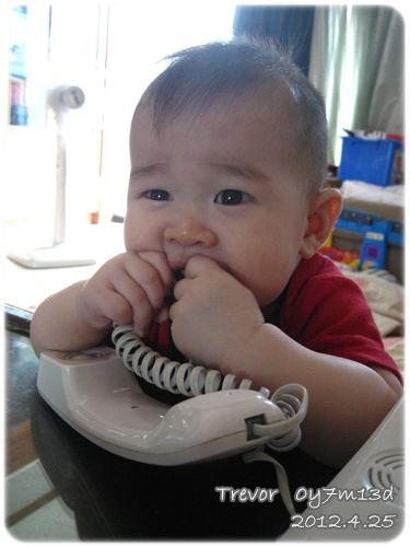 120425-咬電話線 (1)