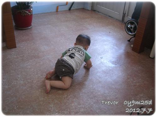 120707-無聊嬰兒四處探索