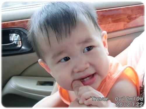 120722-姨的手指頭是磨牙棒 (1)