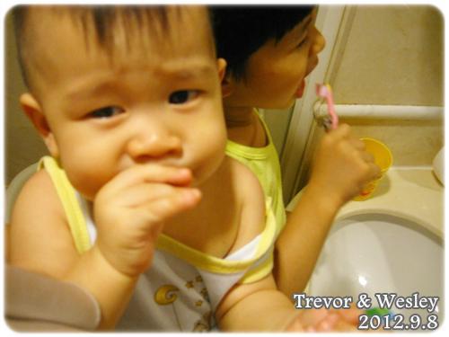 120908-一起刷牙 (1)