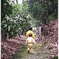 121208-一對寶在果園裡開心散步的背影 (1)