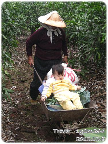 121208-阿祖推著小兔寶和滿車子的菜 (1)