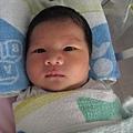 081010-一早剛從嬰兒室回到媽媽身邊的小小人