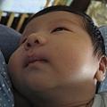 081031-小小人和媽媽兩兩相望的眼神