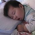 090318-睡熟了的小饅頭