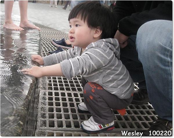 100220-饅頭玩水.jpg