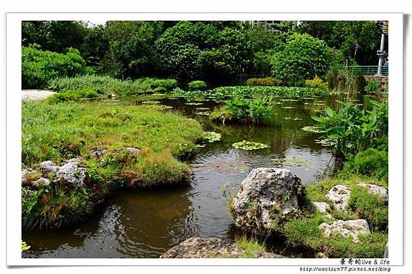科博館熱帶植物園03.jpg