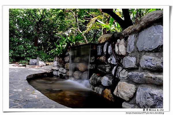 科博館熱帶植物園04.jpg