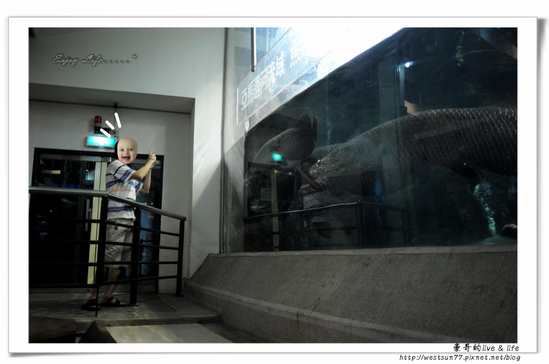 科博館熱帶植物園28.jpg