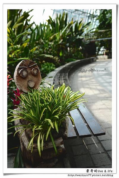 科博館熱帶植物園09.jpg