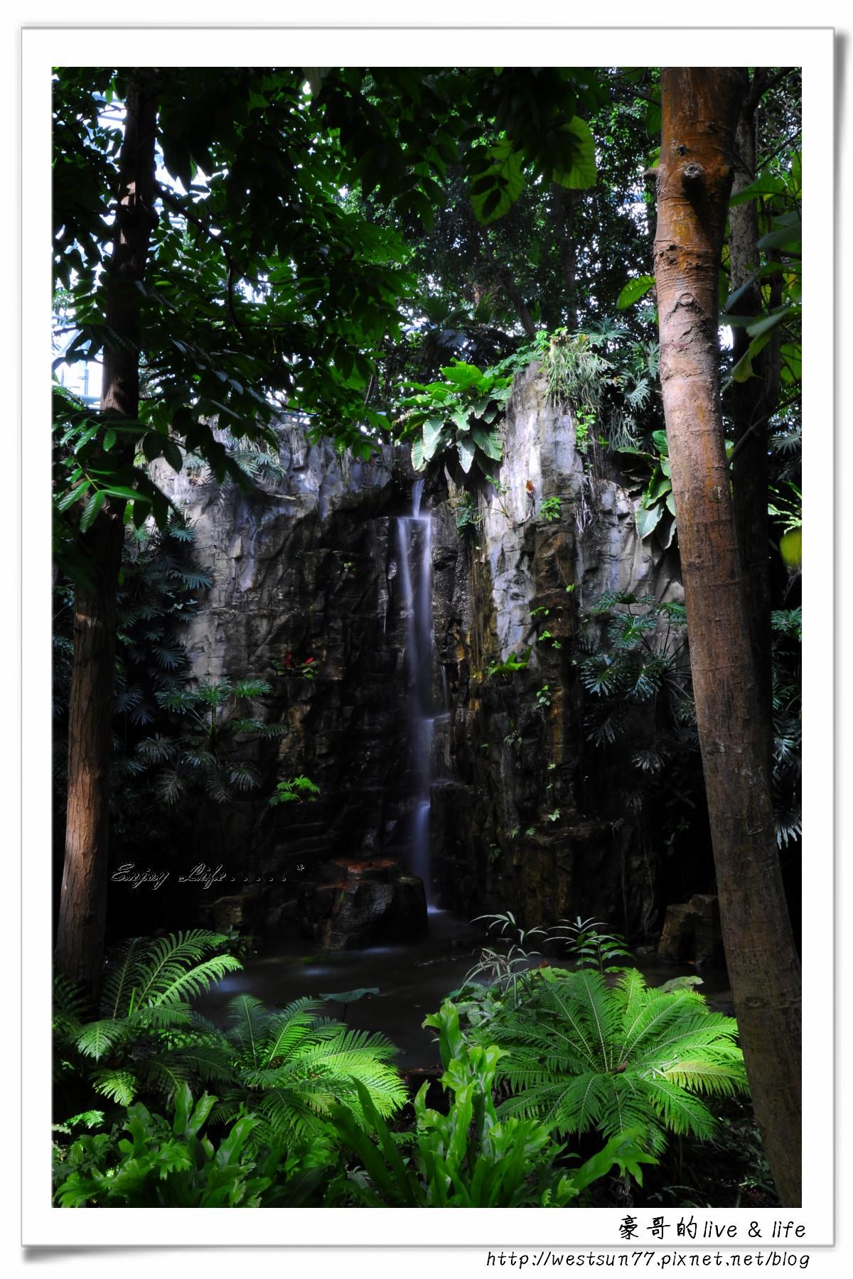 科博館熱帶植物園18.jpg