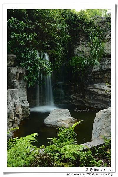 科博館熱帶植物園26.jpg
