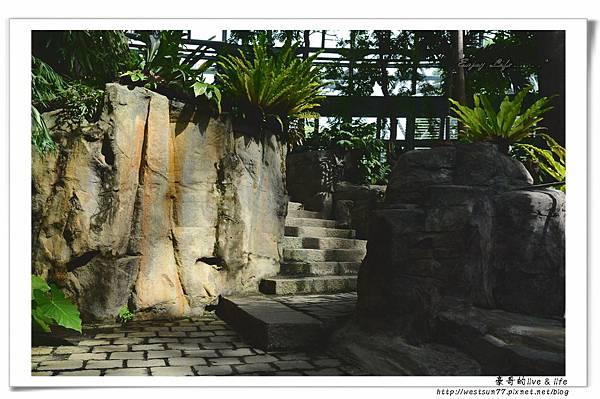 科博館熱帶植物園19.jpg
