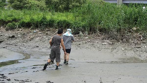 濕地現地調查