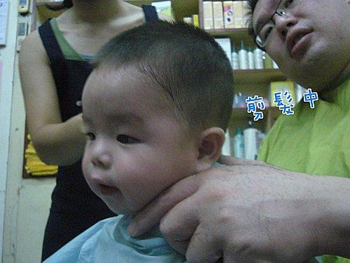 驚~七個月剪了三次頭毛7
