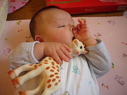 法國小孩人手一隻的玩具6