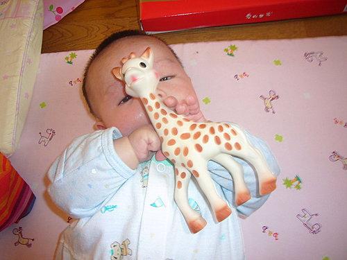法國小孩人手一隻的玩具1