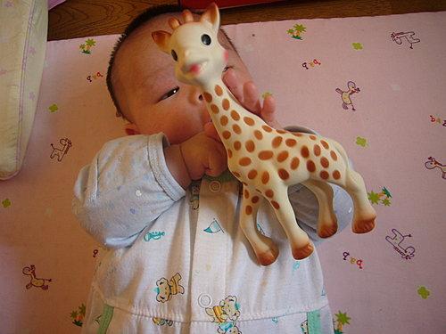 法國小孩人手一隻的玩具2